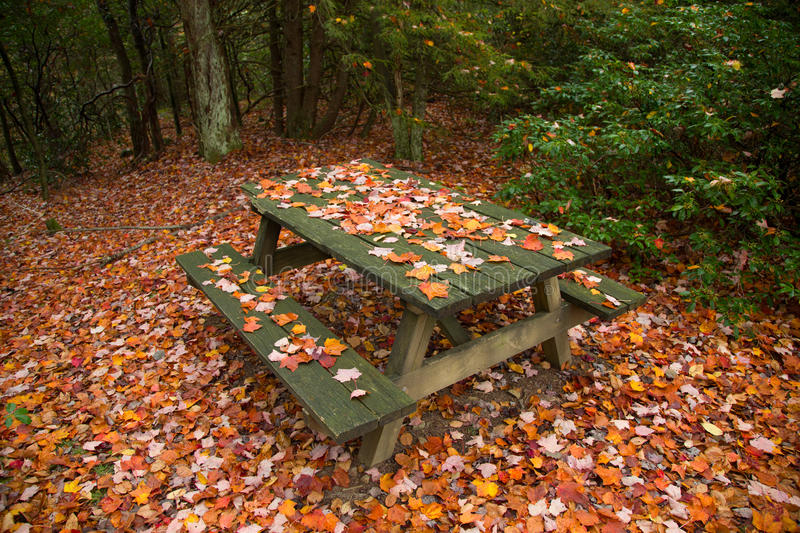 Picnic table and red maple leaves, foliage colors royalty free stock images