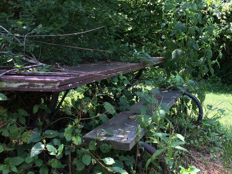 Picnic table rotting royalty free stock photography