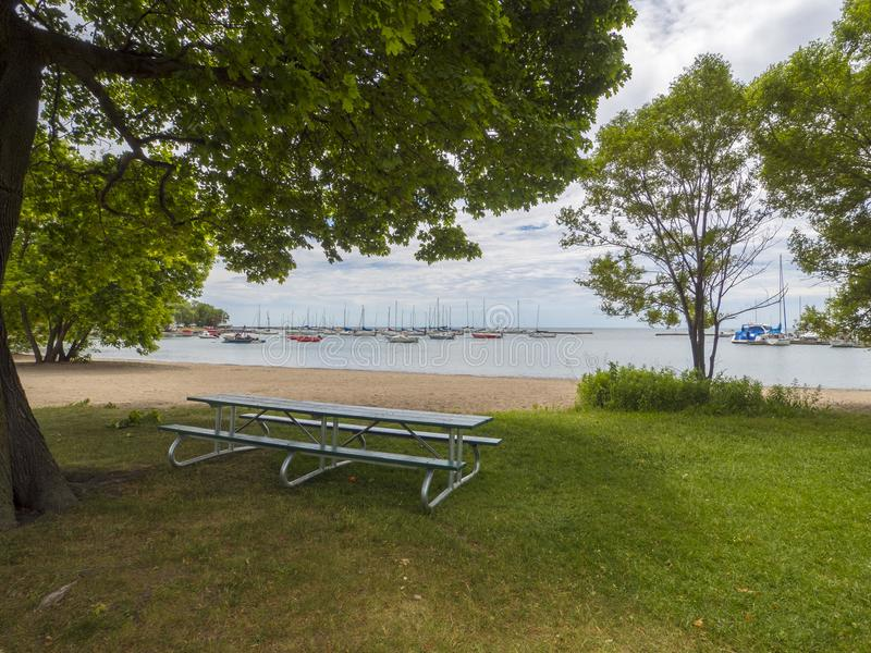 Picnic table under the shade of a big tree near a sand beach by the harbor. Waterfront in toronto stock images