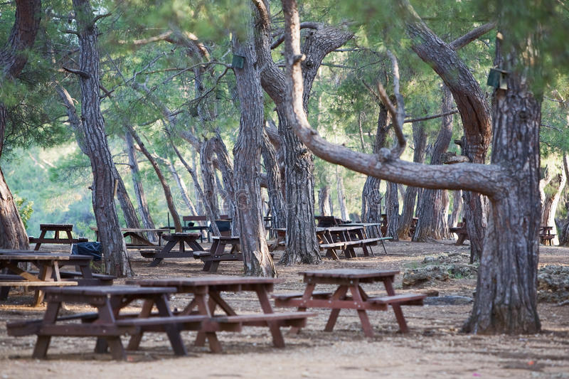 Download Picnic Tables stock image. Image of nature, park, bench - 19492941