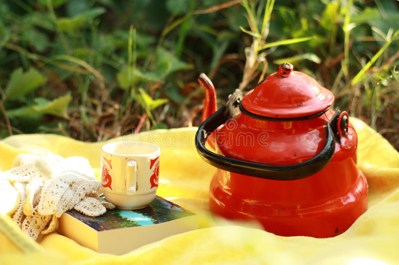 Download Picnic time stock image. Image of picnic, relax, free - 24200349