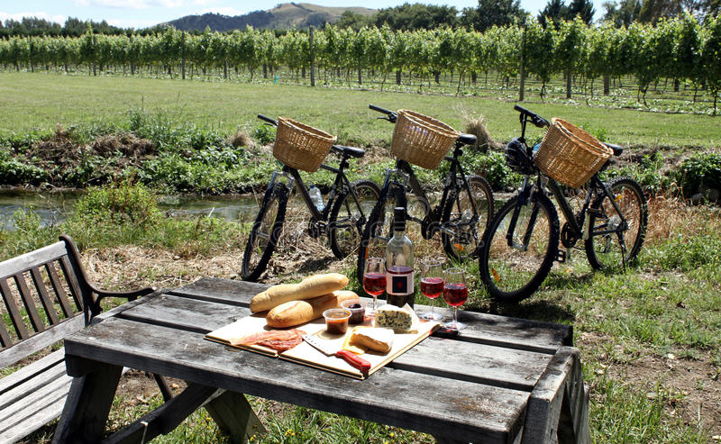 Picnic in a vineyard, New Zealand royalty free stock image