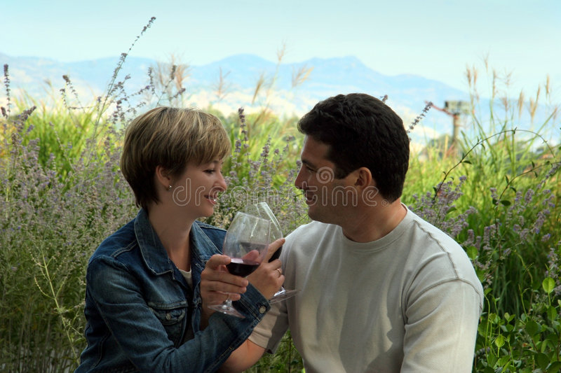 Picnic with wine. Young couple having picnic with wine stock images