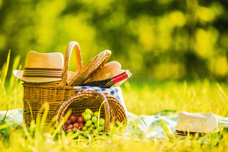 Picnic with wine. And grapes in nature royalty free stock image