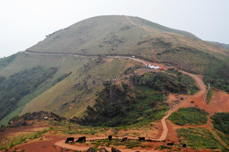 Pico Chikmagalur de Mullayanagiri, Karnataka imagem de stock royalty free