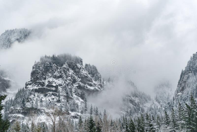 Pico da rocha com a floresta no inverno fotos de stock royalty free