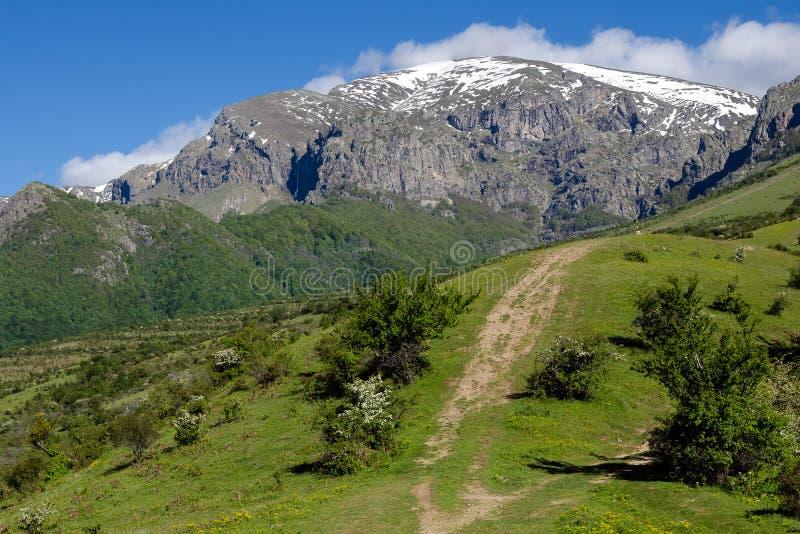 Pico de Botev, montanha de Stara Planina fotos de stock royalty free