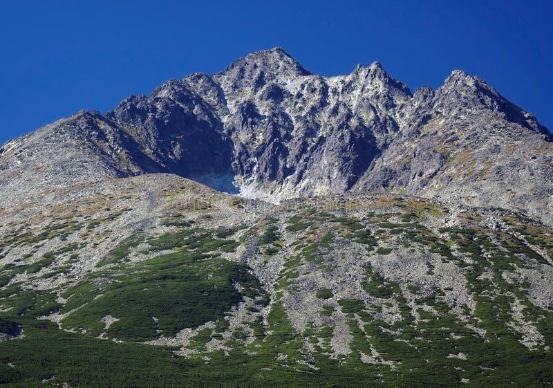 Pico de Gerlach em Tatras elevado eslovaco no verão imagem de stock