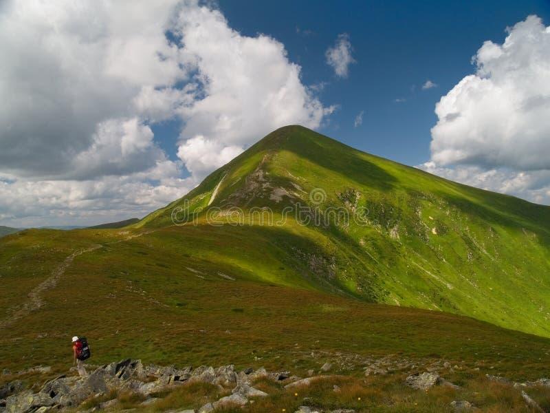 Pico de Hoverla em Ucrânia fotografia de stock royalty free