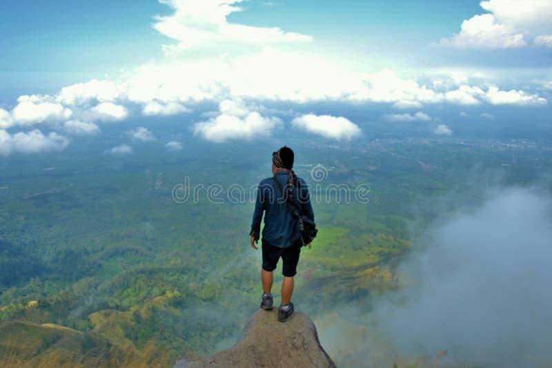 Pico de Lincing fotografia de stock