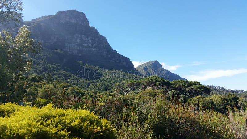 Pico de los diablos de Kirstenbosch fotos de archivo