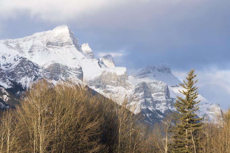 Pico de montaña coronado de nieve majestuoso debajo del cielo parcial de la nube Árboles del invierno en primero plano imágenes de archivo libres de regalías