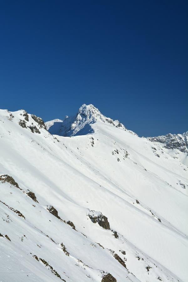 Pico de monta?a del invierno foto de archivo