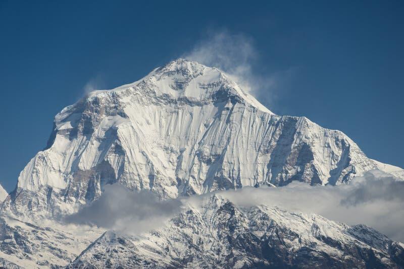 Pico de montanha de Dhaulagiri, passeio na montanha do acampamento base de Annapurna, Pokhara, Nep fotografia de stock royalty free