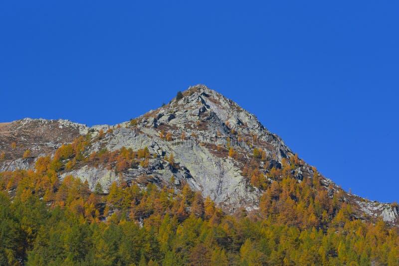 Pico de montanha, no outono fotos de stock royalty free