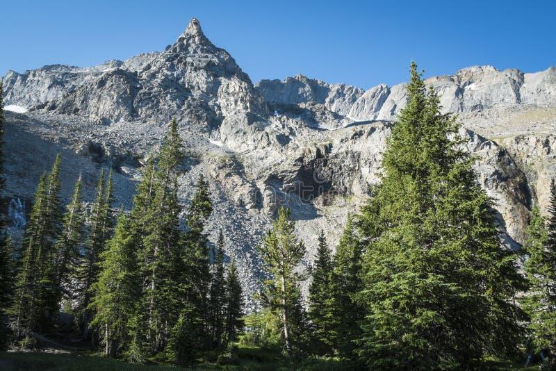 Pico de Rocky Mountain foto de archivo libre de regalías