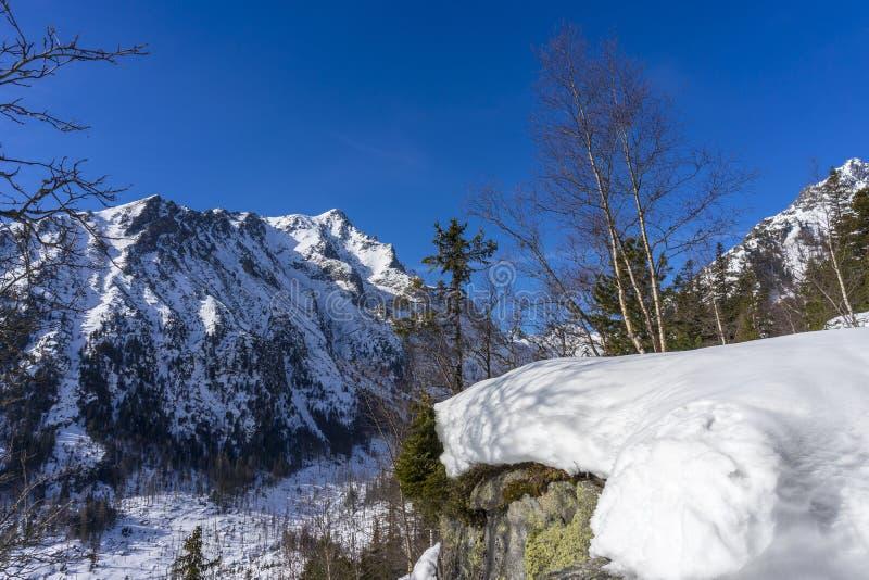 Pico de Slavkovsky em um cenário bonito do inverno Montanhas elevadas de Tatra slovakia fotos de stock