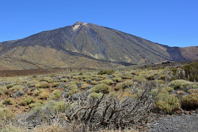 Pico de Teide (κοιμισμένο ηφαίστειο), Tenerife, Κανάρια νησιά, Ισπανία, Ευρώπη στοκ εικόνες