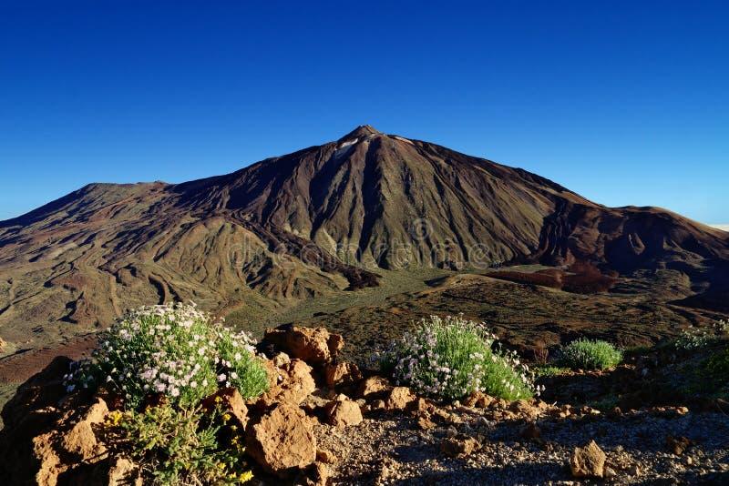 Pico del Teide, o pico o mais alto da Espanha, Tenerife foto de stock