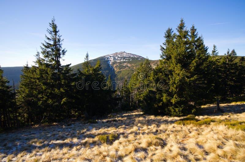 Pico em montanhas de Karkonosze - Polônia de Sniezka imagem de stock royalty free