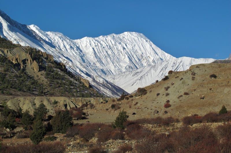 Pico nevado de Tilicho fotografía de archivo