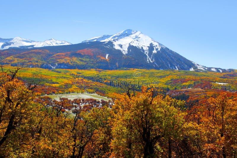Pico ocidental de Beckwith fotografia de stock royalty free