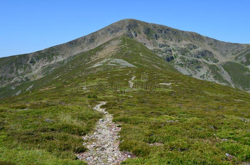 Pico San Millà ¡ n & x28; Burgos Spain& x29; 3 royaltyfri fotografi