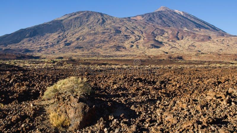 Pico Viejo和Teide 免版税库存图片