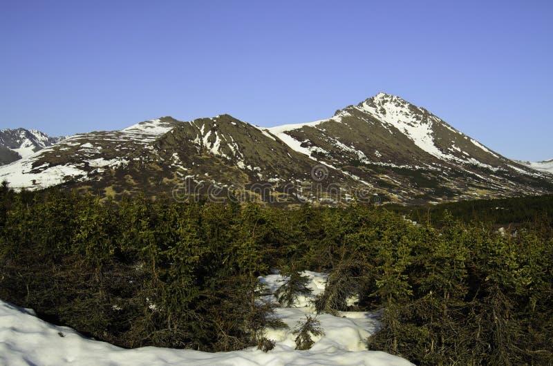 Picos cobertos de neve fotos de stock