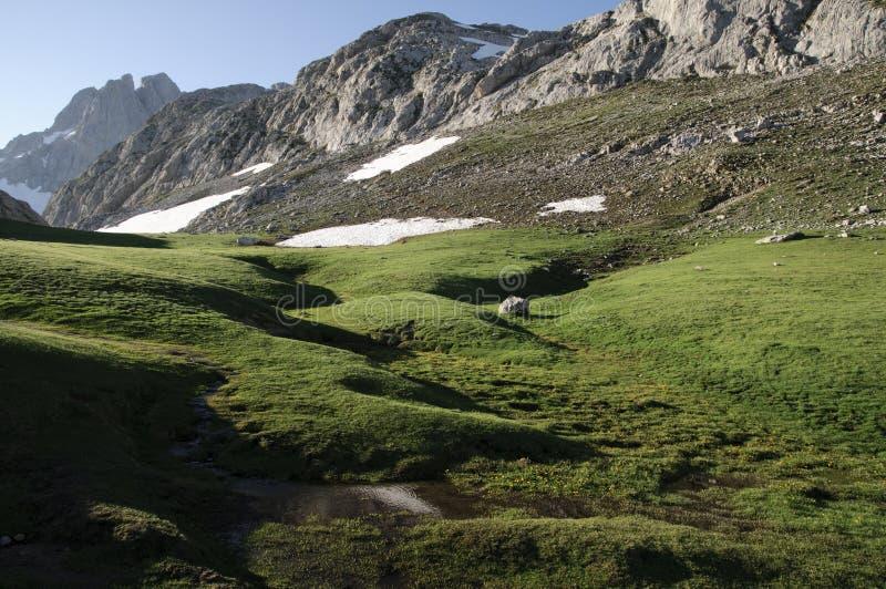 Download Picos de Europa, España foto de archivo. Imagen de verde - 41909476