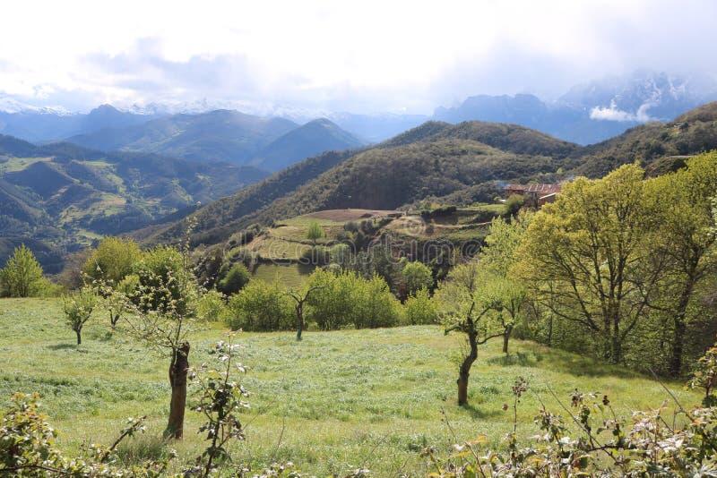 Picos de Europa, Spagna fotografie stock libere da diritti