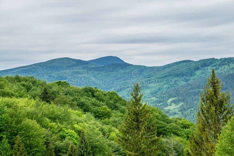 Picos de montaña de los Cárpatos fotos de archivo libres de regalías
