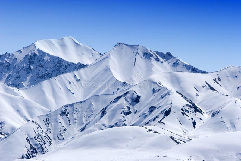Picos de montanha nevado fotografia de stock