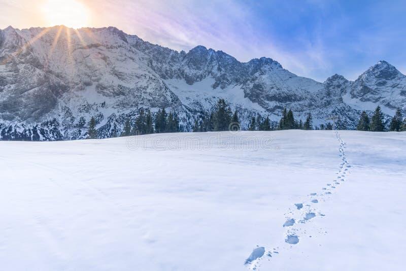 Picos de montanha no inverno imagem de stock