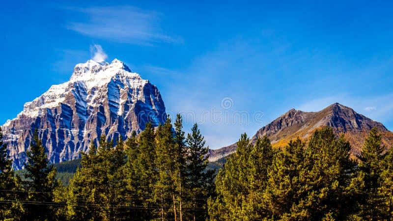 Picos de montanha tampados neve em Yoho National Park fotos de stock royalty free