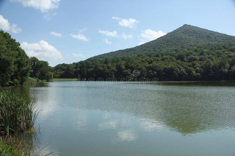 Picos do lago otter foto de stock royalty free
