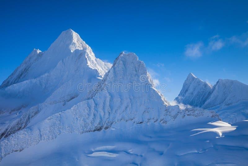 Picos gelados de cumes suíços fotografia de stock royalty free