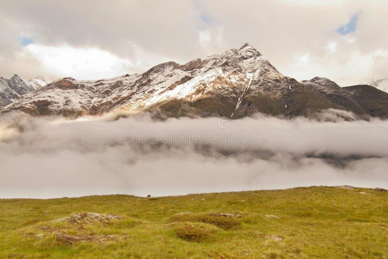 Picos nevosos agudos de las montañas de las montañas sobre el valle por completo de la niebla pesada, clima tempestuoso imagen de archivo