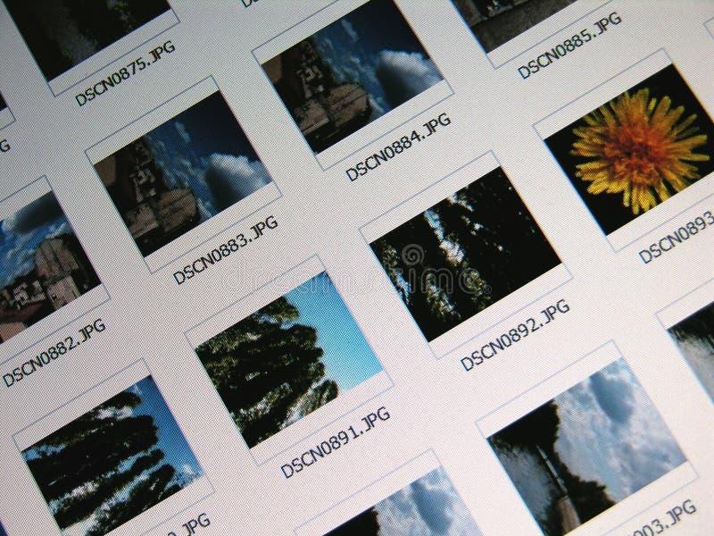 Pics Стоковое Изображение RF