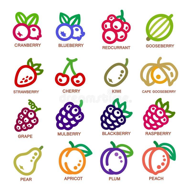 Pictogram van de fruit het dunne lijn royalty-vrije illustratie