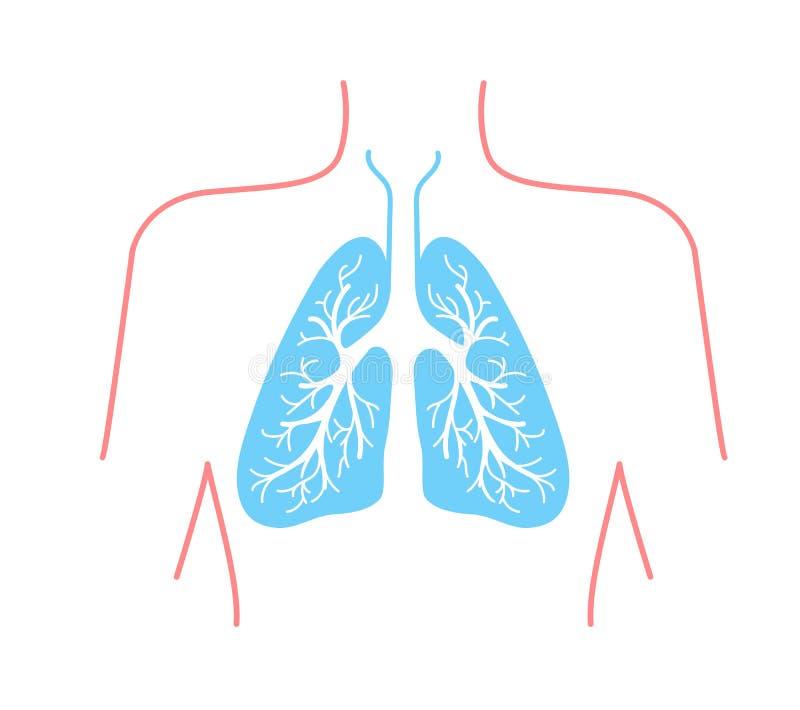 Pictogram van de menselijke longen royalty-vrije illustratie