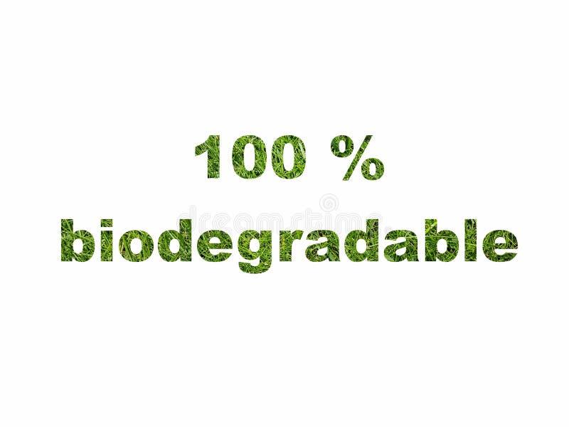 Pictogram van het het tekensymbool van de Eco het vriendschappelijke biologisch afbreekbare groene die tekst op wit wordt geïsole vector illustratie