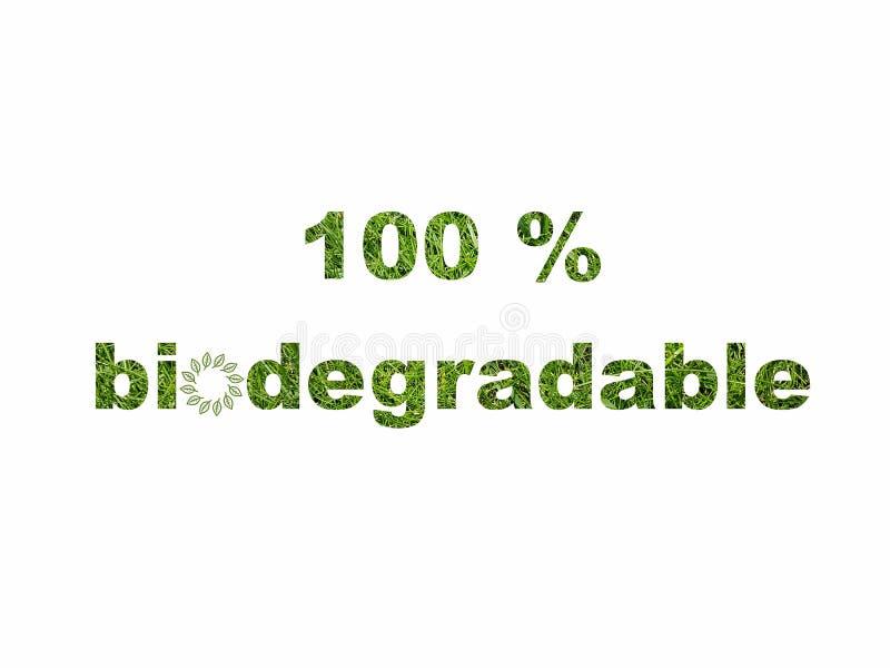 Pictogram van het het tekensymbool van de Eco het vriendschappelijke biologisch afbreekbare groene die tekst op wit wordt geïsole stock illustratie