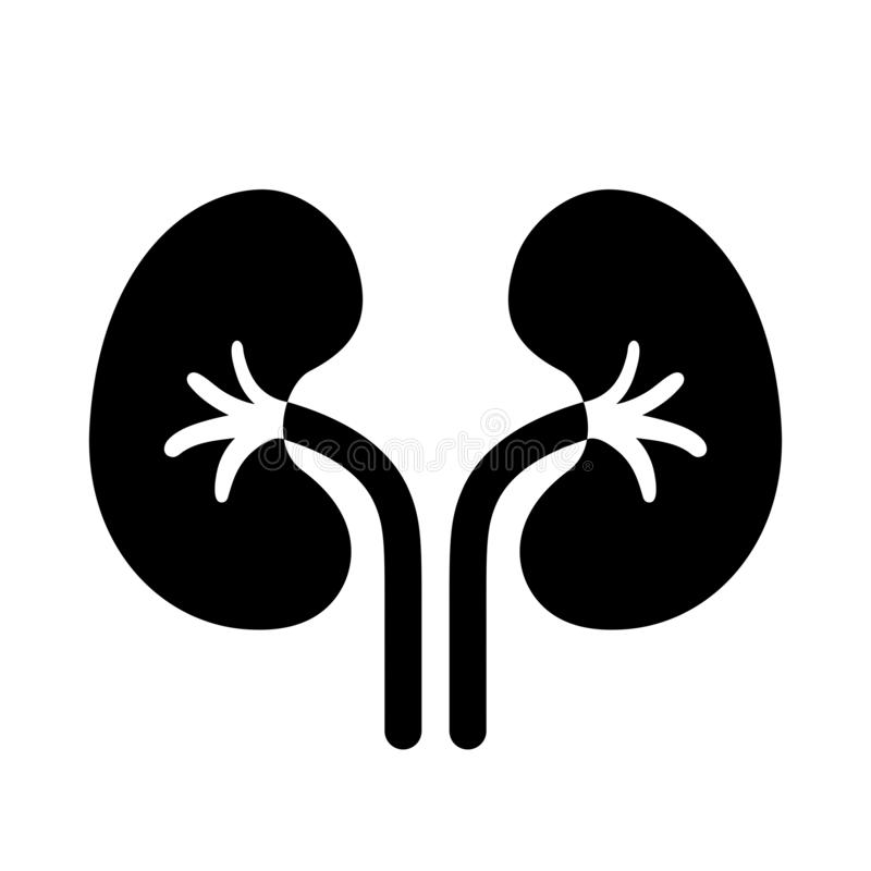 Pictograma del vector de los riñones ilustración del vector