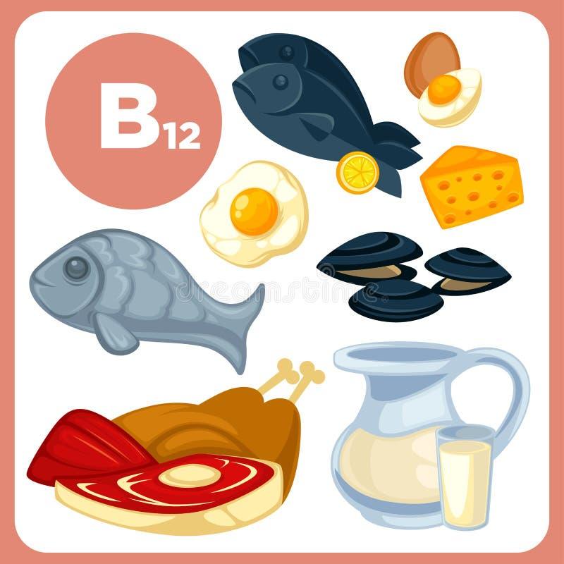 Pictogrammenvoedsel met vitamine B12 stock illustratie