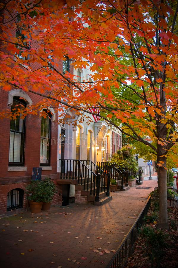 Pictoresque Street with a Red Leaves Tree in Autumn in Georgetown. Washington, Virginia stock image