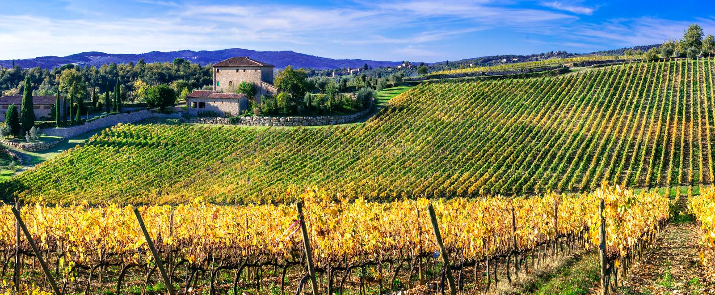 Pictorial Tuscany ,Chianti region,italy stock image