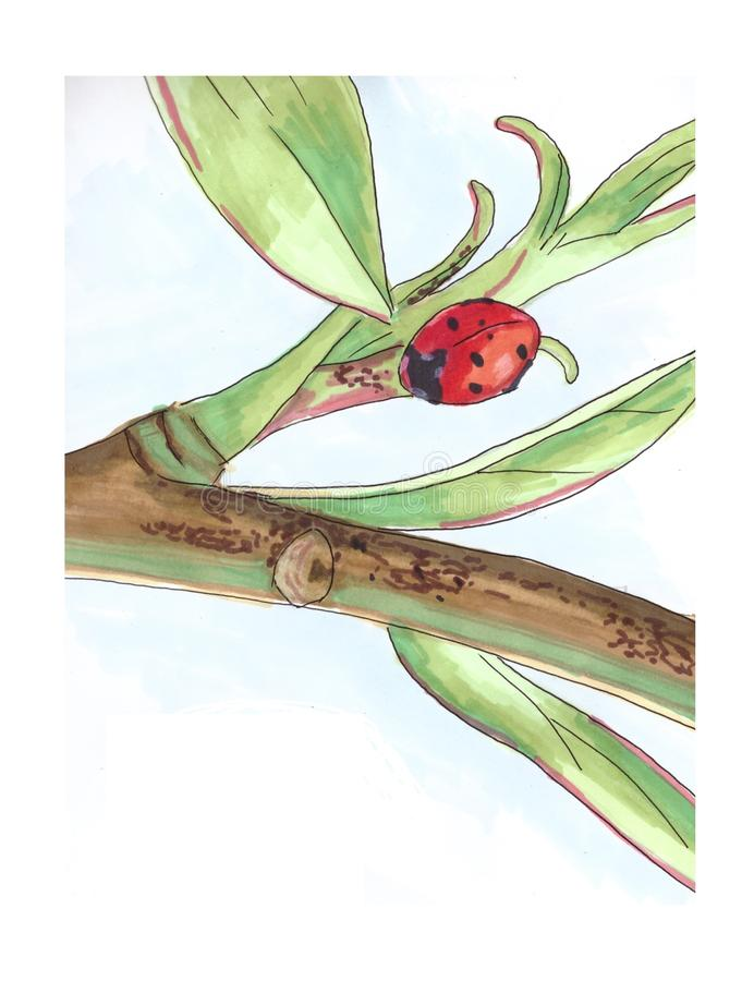 Picture of alone red labybug on tree branch. Green, black, white, background, love, romantic, little, animal, botanic, leaves, life, nature, sketch, art, nice stock illustration