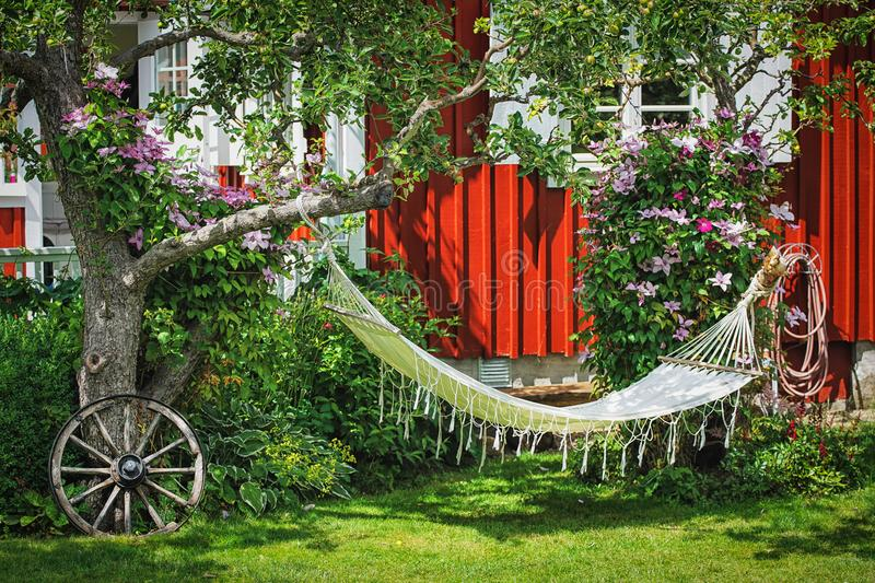 Picture of backyard area with hammock and old vintage details on the green grass.  stock images