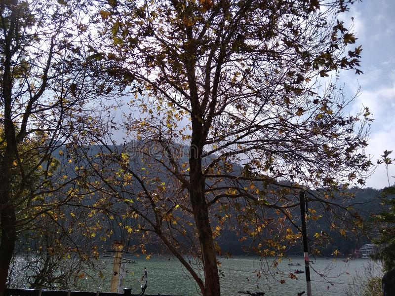 Mall road near lake in Nainital Uttarakhand India. It is a picture of beautiful hill station called Nainital in India on a lake known as Naini Jheel from mall royalty free stock image